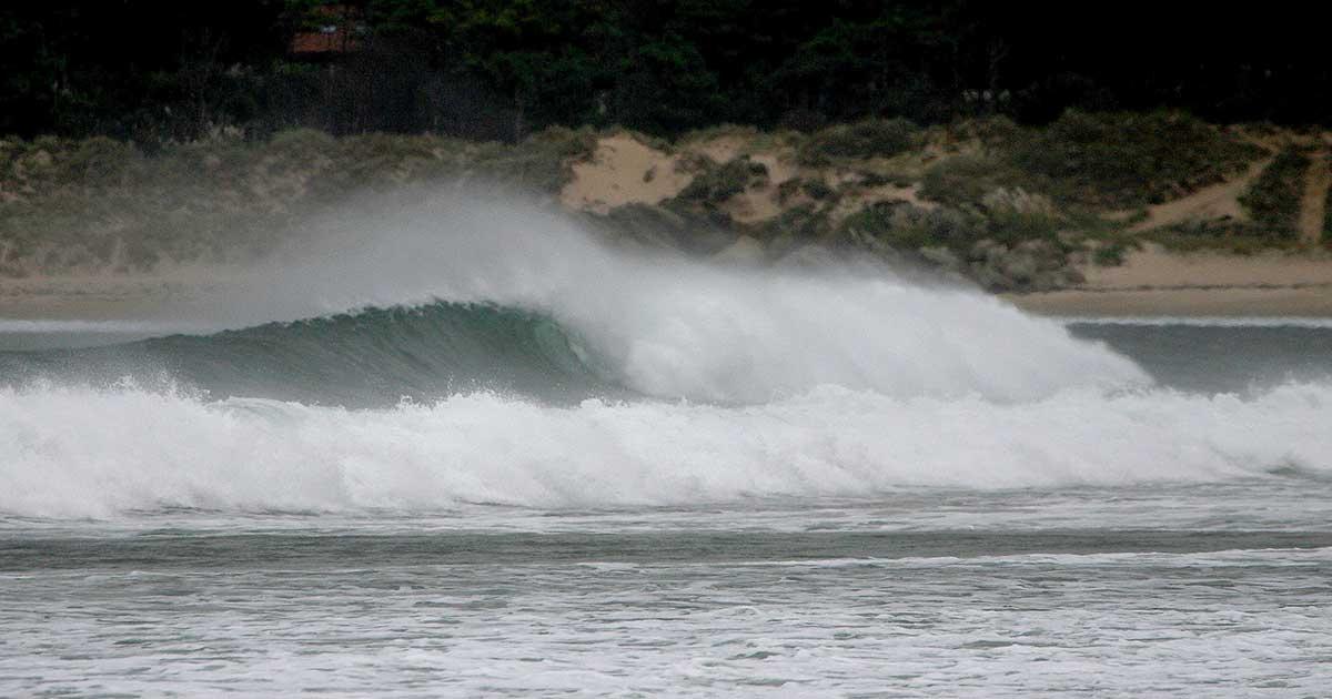 Surf in somo